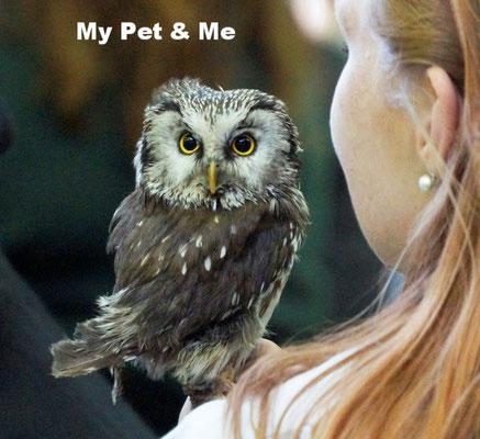 My Pet & Me