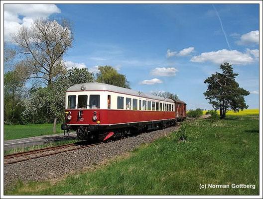 """Ausflugstipp der """"Ostfalen Courier"""" - eine romantische Museumsbahn zwischen Braunschweig und Magdeburg in einer wunderschönen Natur erleben"""