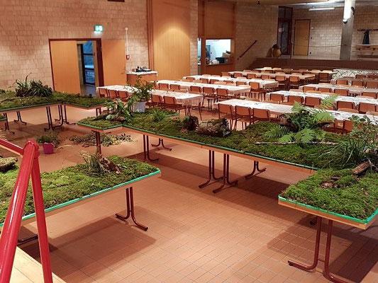 Holzstrünke, Farne und Zweige dienen als Dekoratiom.