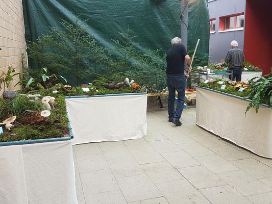 ... Reinigung vor der Öffnung der Ausstellung am Samstagmorgen!