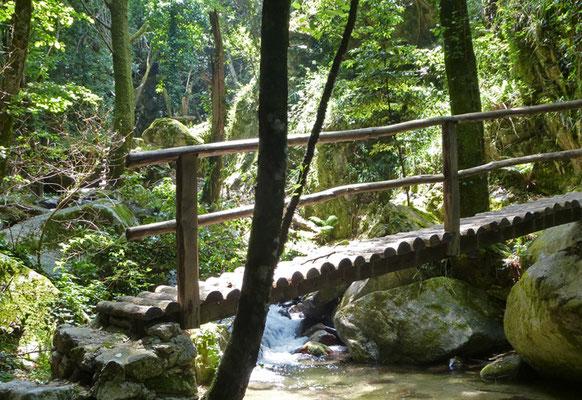 Tageswanderung Kalabrien Wasserfall