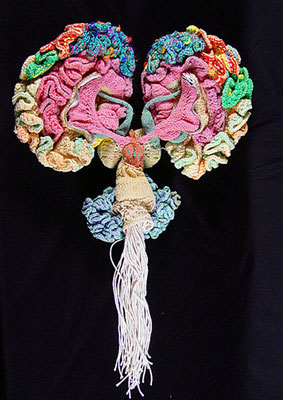 Knitted Brain von Karen Norberg, Neurologin