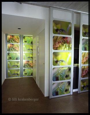 """""""Vorgeburt"""", Raumgestaltung Hebammenpraxis Dreieck 8004 Zürich, durch Sektor4 GmbH mit Fotos von Lilli 2004"""