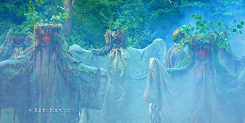 Xang im Ried, Freilichtspiel von Paul Steinmann, Regie: Roland Lötscher, Riedgeister, 2008