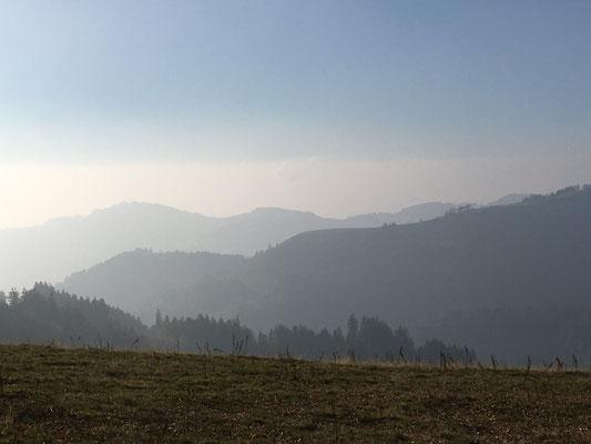 Höchhand, Zürcher Oberland, Switzerland