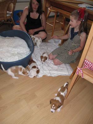 Babysitting^^