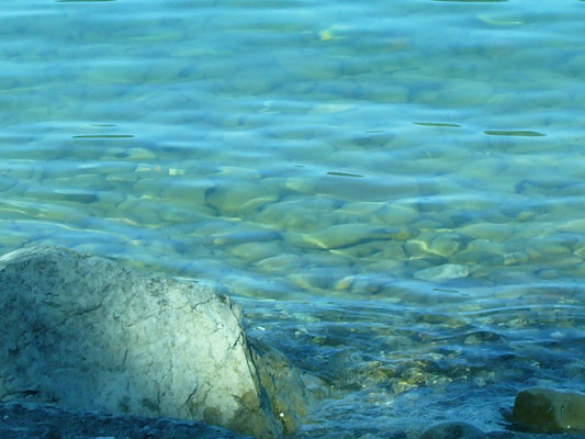 Urlaub am Bodensee mit Seeblick, Ferienwohnung am Bodenseeufer