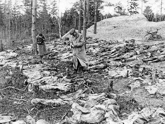 El personal de la Cruz Roja Internacional, bajo el mando de los nazis alemanes, investigan los cuerpos de una fosa común en el bosque de Katyń, donde la policía secreta ruso soviética (NKVD) mató a casi 22.000 ciudadanos polacos, abril 1940.