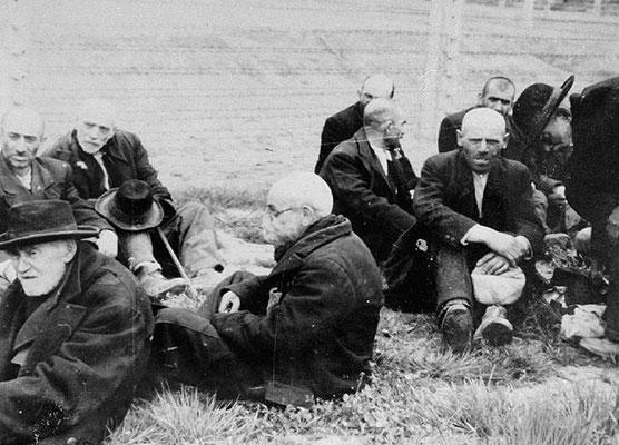 Personas mayores judías de Rutenia subcarpática sentados en la hierba antes de ser enviados a las cámaras de gas en Birkenau. La foto fue tomada por las SS en el verano de 1944. AUSCHWITZ Study Group
