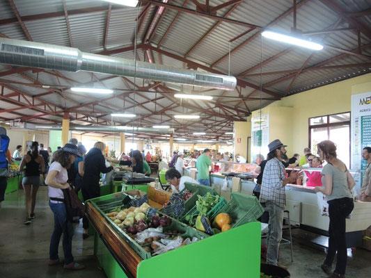 Markthalle in Puntagorda