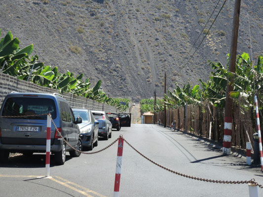 Täglich gab es einen Kampf um einen Parkplatz für den Mietwagen. Zwischen Bananenplantagen und Lava