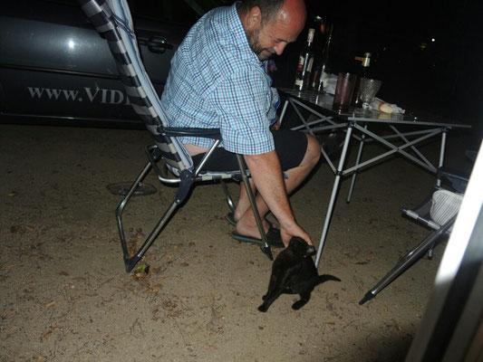 abends Besuch von einem kleinen schwarzen Deibel
