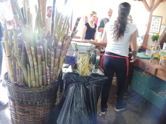 Caipirinha mit echtem Zuckerrohr