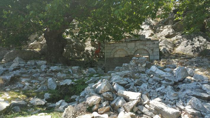 Ein Brunnen unter uralten Platanen (Suchbild mit Inge)