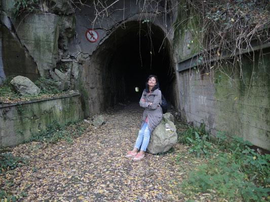 Hier hat einer versucht den Tunnel umzuschubsen