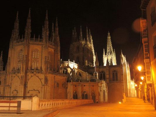 Die Kathedrale bei Nacht und von hinten...