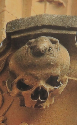 ihr Wahrzeichen - ein Frosch auf einem Totenschädel