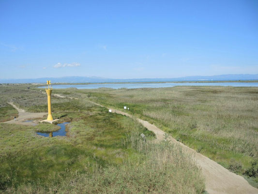 zum Strand von Riumar am Ebro-Delta
