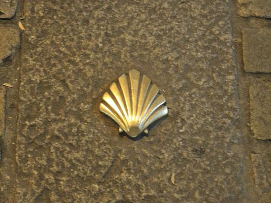gepflastert mit goldenen Muscheln