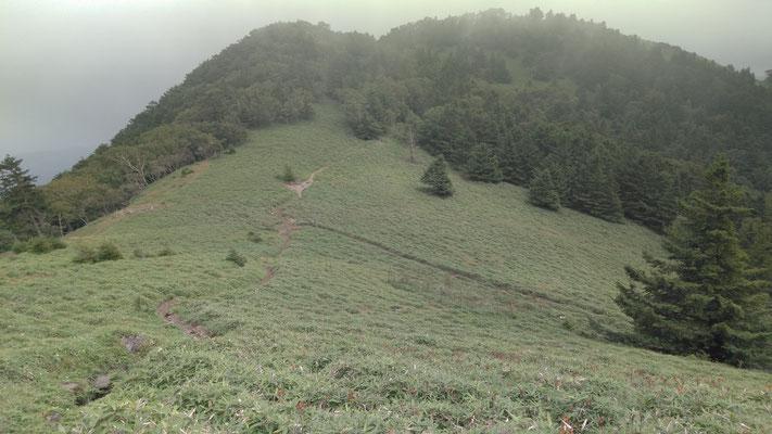 大菩薩嶺、石丸峠付近