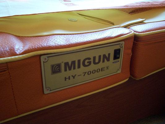 Bild: MIGUN HY 7000 elektrische Massageliege - Typenschild / Markenschild - elektrische Wellnessliege