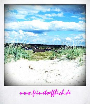 Blick vom Strand Richtung Dünen