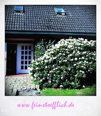 Ferienhaus Eggershof