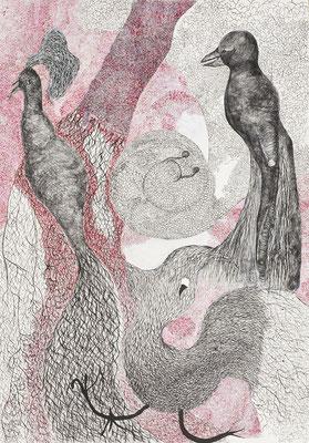 Birds, ink on cardboard, 73 x 51 cm, 2007