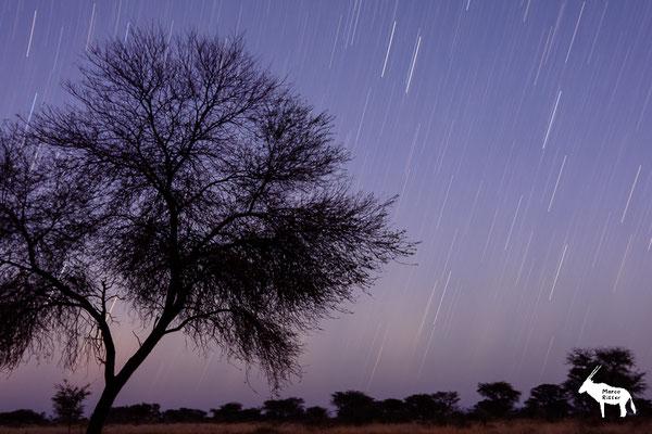 Kreisende Sterne