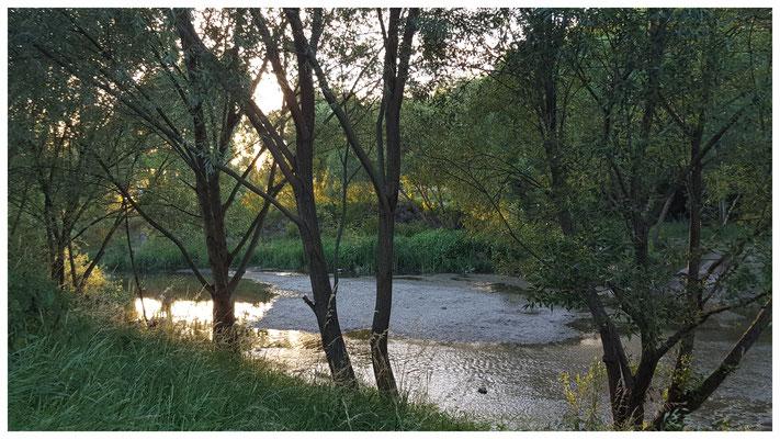 Im Fluss sein