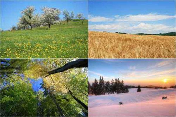Postkarte Jahreszeiten 1