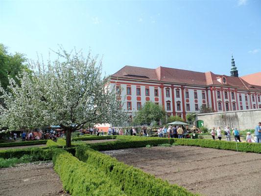 Rundgang im Klostergarten