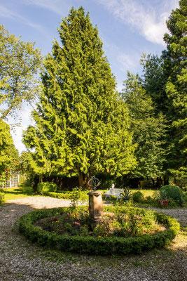 Der Garten im Sommer #AltesForstamtimteutoburgerwald#