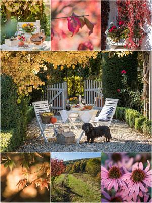 Collage Altes Forstamt im Teutoburger Wald - Herbstleuchten