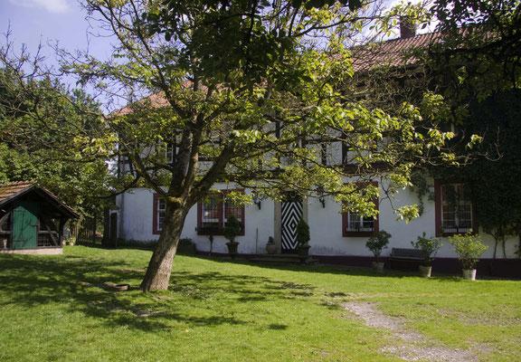 Nussbaum auf dem Hofgarten Altes Forstamt