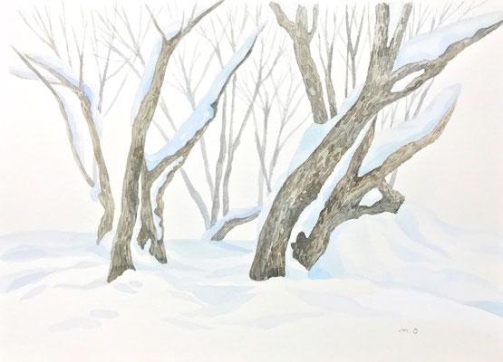 「静かな白」  Watercolor. 2017
