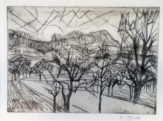 Landschaft mit Bäumen, 1969, Kaltnadel-adierung, 54 x 40 cm