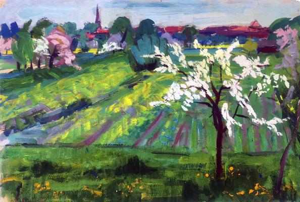 Frühling bei Staufen, 1955, Gouache auf Papier, 49 x 32 cm