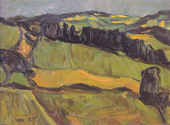 Hegaulandschaft 1948