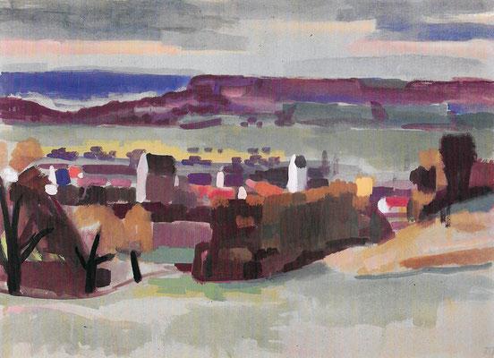 Riedheim mit Buchberg 1967