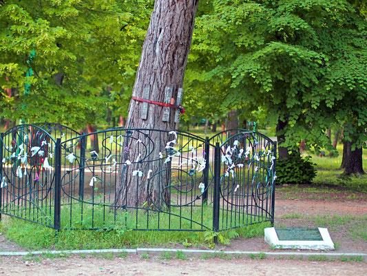 центральный парк в Таганроге