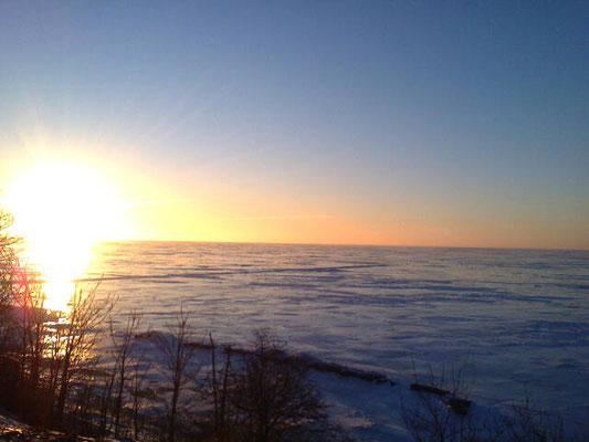 зима в приморском парке