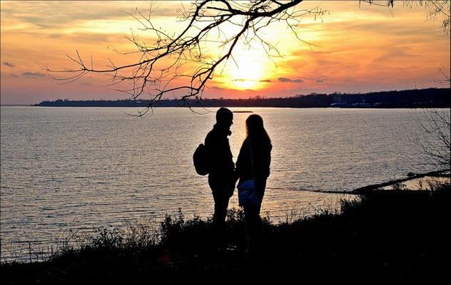 Приморский парк таганрог фото