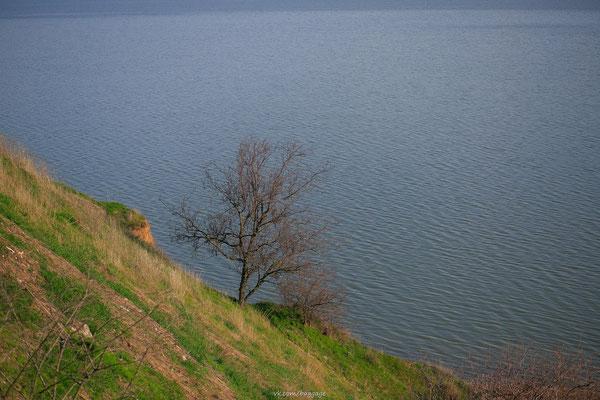 вид на море Таганрог