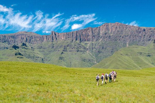Drakensberge - P303021179