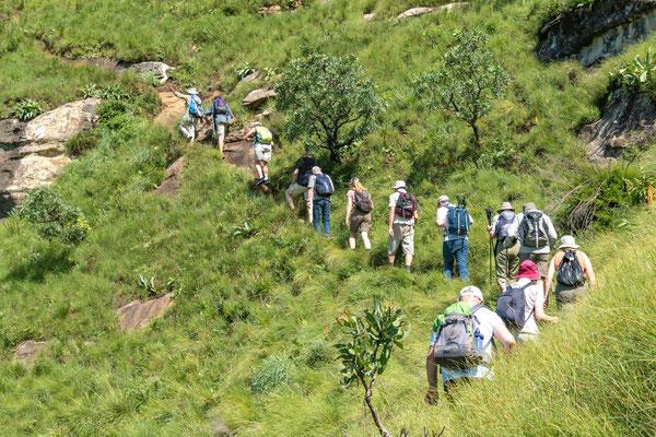 Drakensberge - P303021159