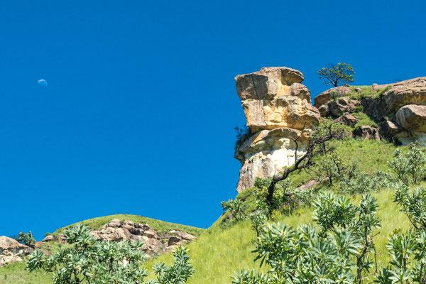 Drakensberge - P3021152