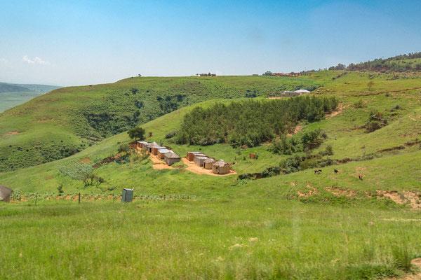 Busfoto - Auf dem Weg in die Drakensberge - P3010956