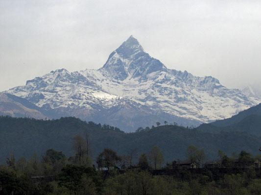 Machhapuchhare, der Hausberg von Pokhara