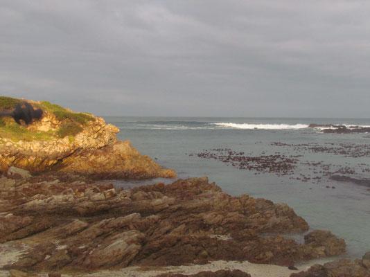 entlang der Küste